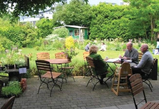 energy-efficiency-audit-oxford-cafe