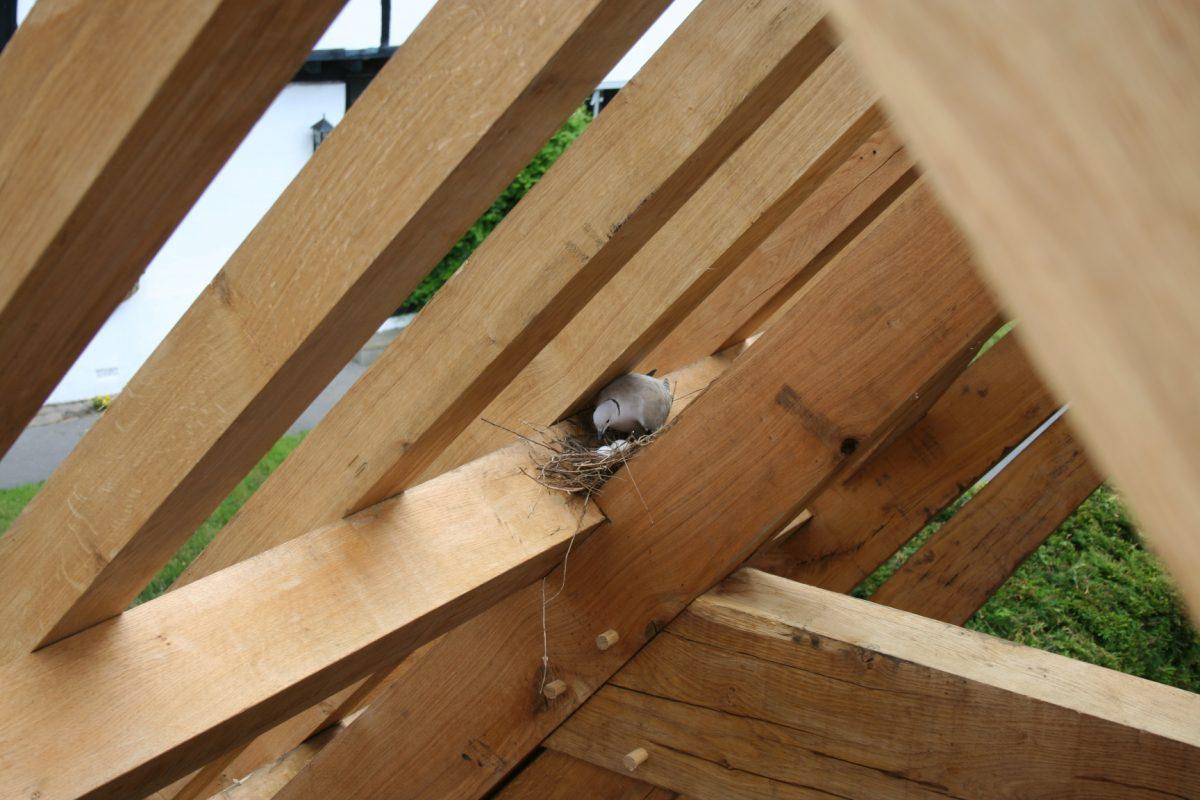Brick Timber Frame Homes : Timber frame homes vs brick clpm