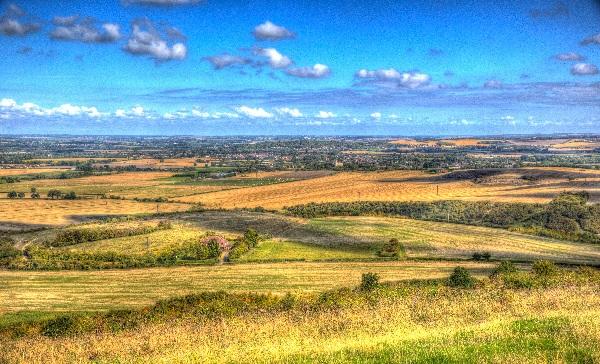building project management Hertfordshire landscape